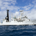 In December, Sea Shepherd unveiled their latest ship, the SSS Sam Simon, which last week was used to locate the Japanese whaling fleets refueling tanker and prevent it from reaching the whalers. Photo: Sea Shepherd Conservation Society