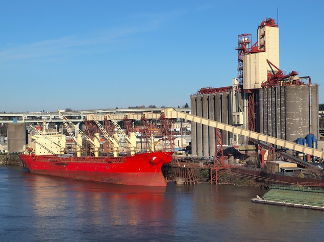 bulk carrier grain dry cargo ship